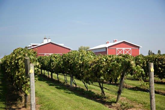1000 Island Wineries, Breweries & Distilleries
